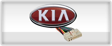Kia OEM Harness