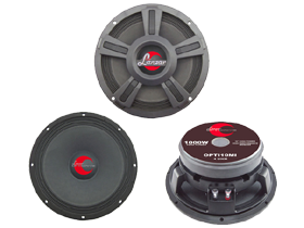 Closeouts 10 Inch Speakers