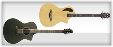 Peavey Acoustic Guitars
