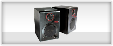 Pro Audio DJ Speakers