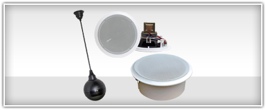 Pro Audio Ceiling Speakers